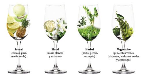Aromas de la Variedad Sauvignon Blanc
